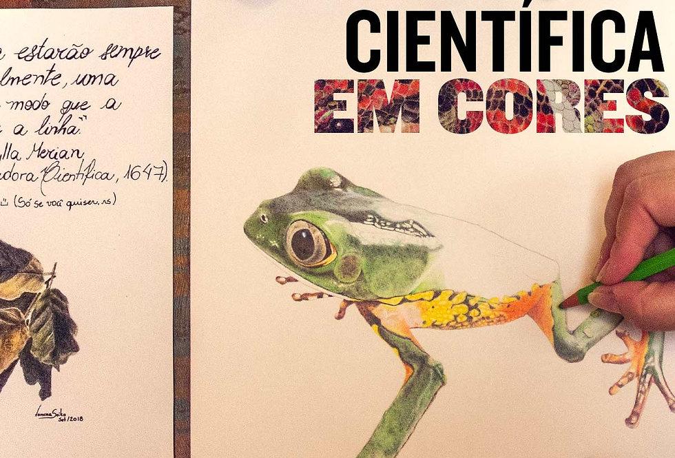 Ilustração Científica em Cores 31/08/2019 e 01/09/2019