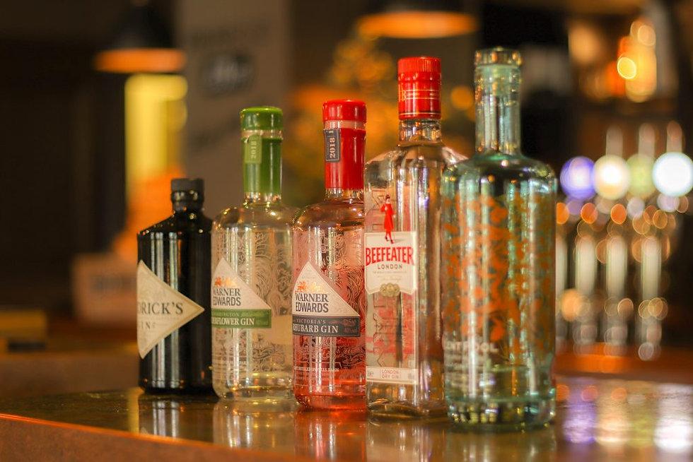 gin long shot.jpg