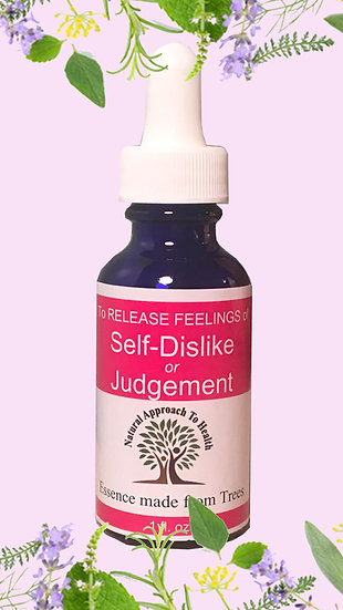 Self-Dislike or Judgement