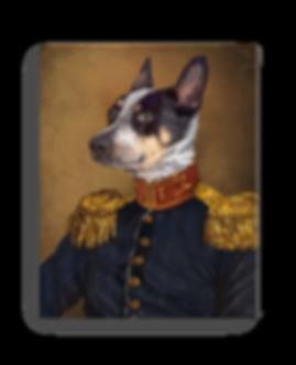 dog portrait, pet portrait, regal pet portrait, renaissance pet portrait