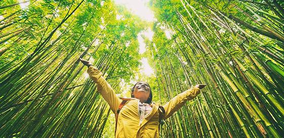 Sustainable eco-friendly travel tourist