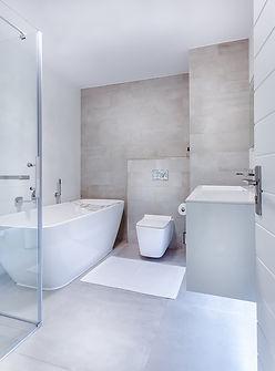 Toilet-Interior-Shower-Modern-Minimalist