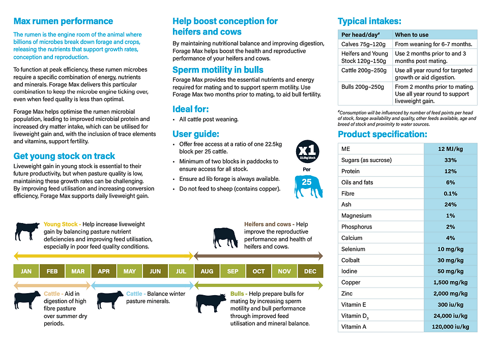 Forage max brochure.png