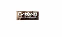 eweboss logo website