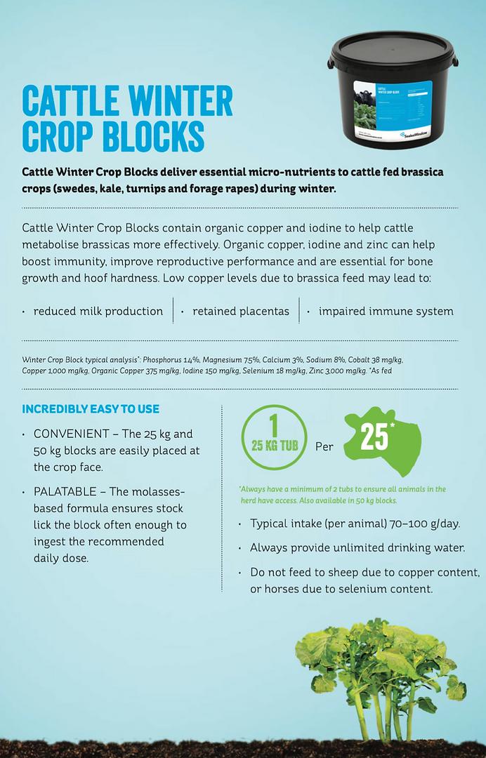 Cattle Winter crop blocks.png