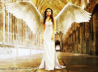 Angel Sparkles.jpg