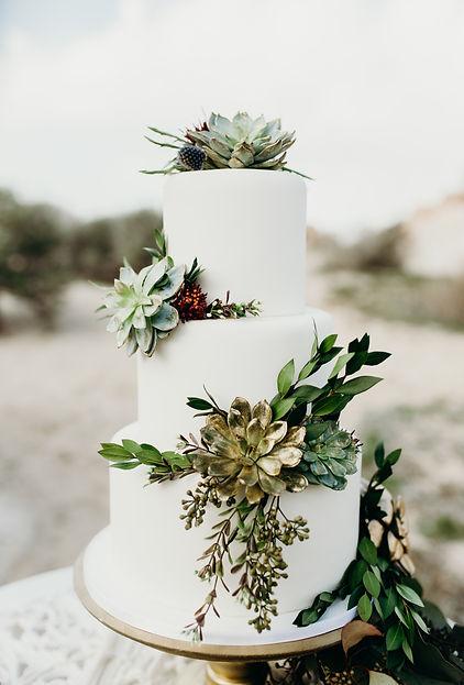 Antelope Island Photographer, boho cake