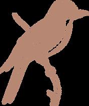 Pássaro San Marino.png