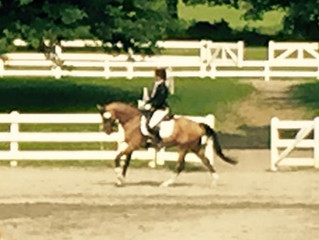 Dressage at the Park - Elvis Wins I-1 with 68.9%