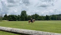 riding field