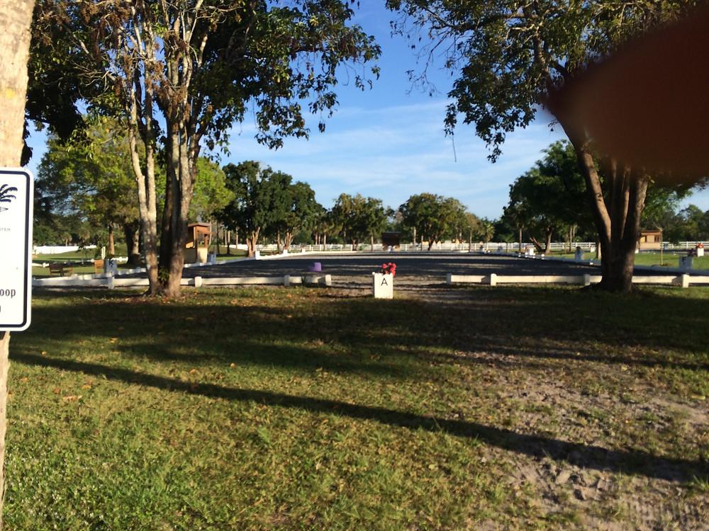 Arena at White Fences