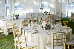Classy Ballroom Chairs in Any Color for wedding, graduation, religious event, festival, corporate ev