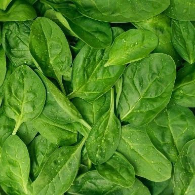 Baby Spinach 1/2 LB