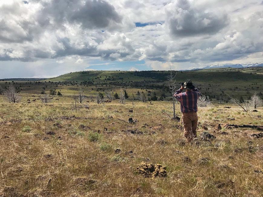Kiger Mustang Viewing Oregon Dude Ranch Vacation