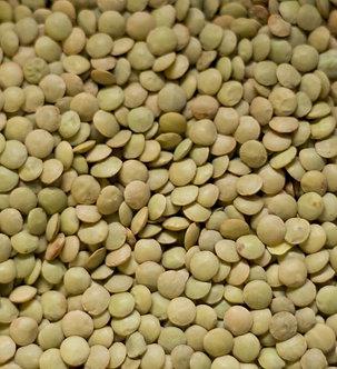 Green Lentils 1 lb