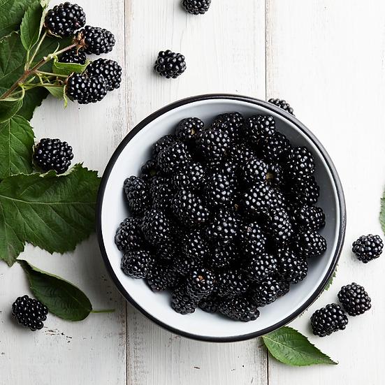 Fresh Blackberries 1/2 pint