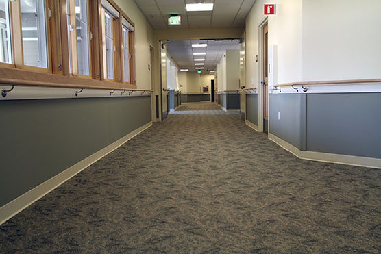 Commercial Carpet Cleaning Redmond