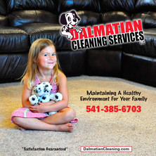 Dalmatian Cleaning Services