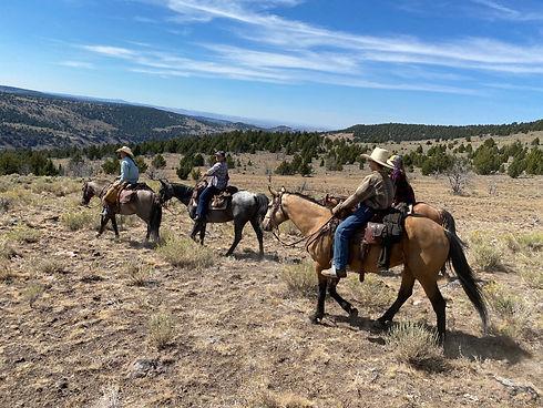 Kiger Mustang Viewing Oregon Dude Ranch