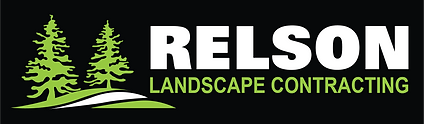 STACKED Relson Logo2.png