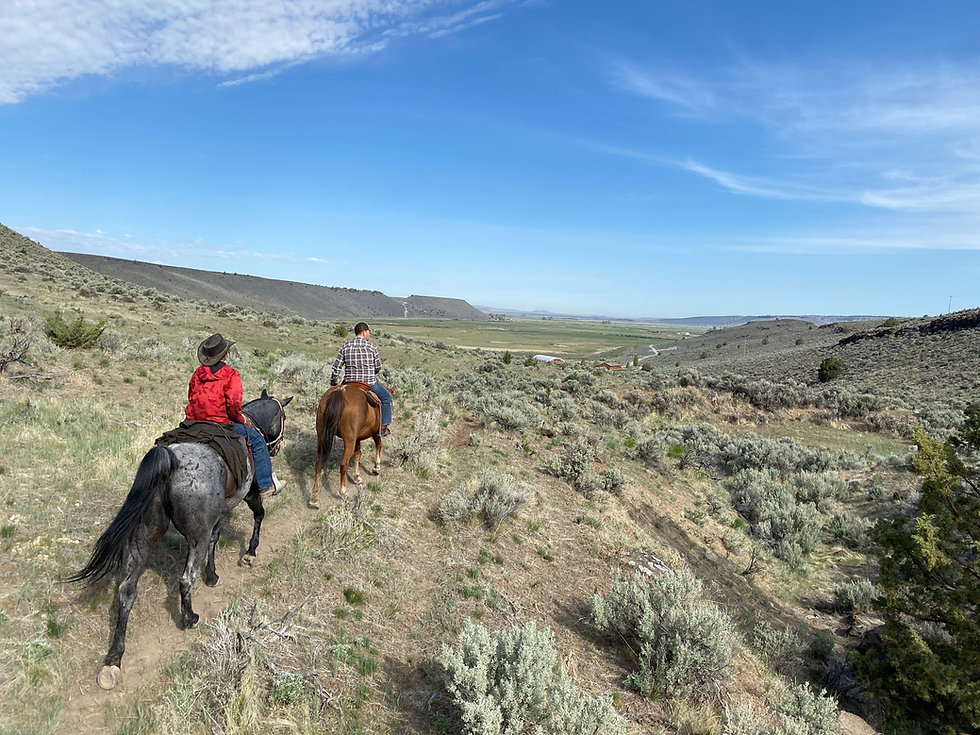 Horseback Riding at Steens Mountain Guest Ranch oregon