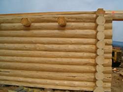 BC Log Finishers new build 32