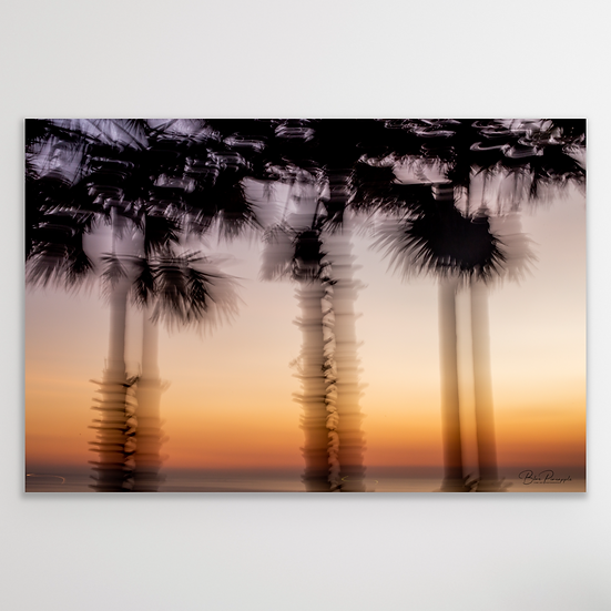 DANCING PALM TREES   Limited Edition