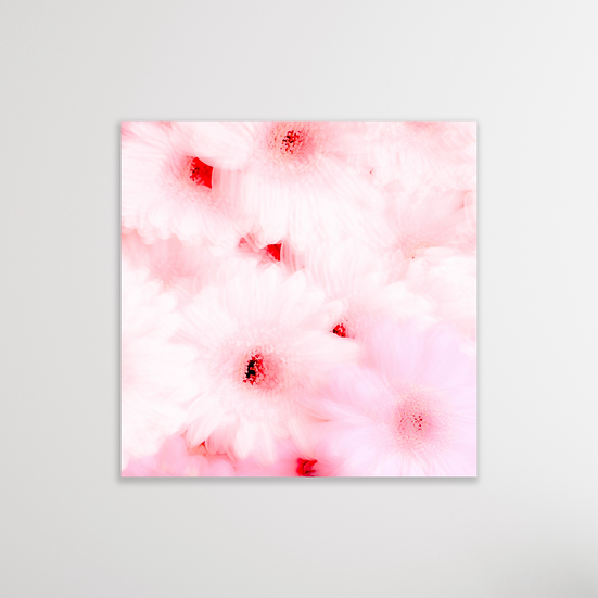 PINK FLOWERS | Limited Edition