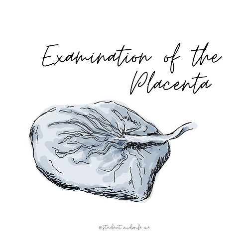 Examination of the Placenta Pocket Cards