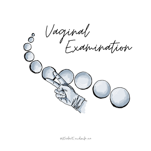 Vaginal Examination Pocket Cards