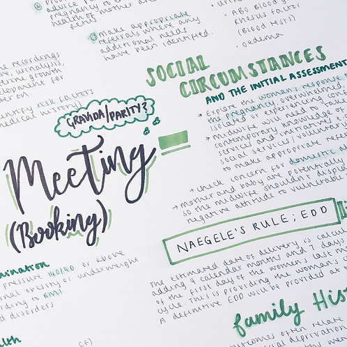 The Initial Meeting - Booking