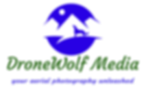 updated hi rez dronewolf logo.png