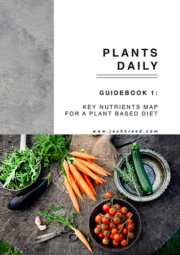 free plant based guidebook.png