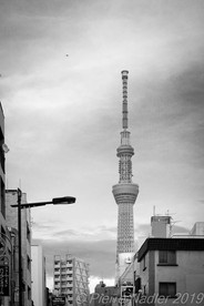 Tokyo-Sky Tree