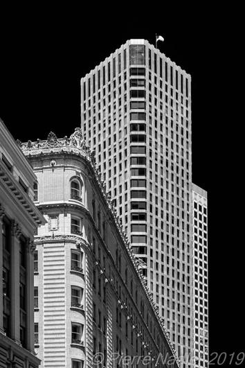 San Francisco - Elevation Dark Sky 15