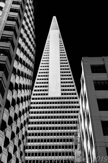San Francisco - Elevation Dark Sky 07
