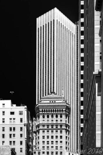 San Francisco - Elevation Dark Sky 02