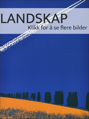 forsidebilde_landskap2.jpg