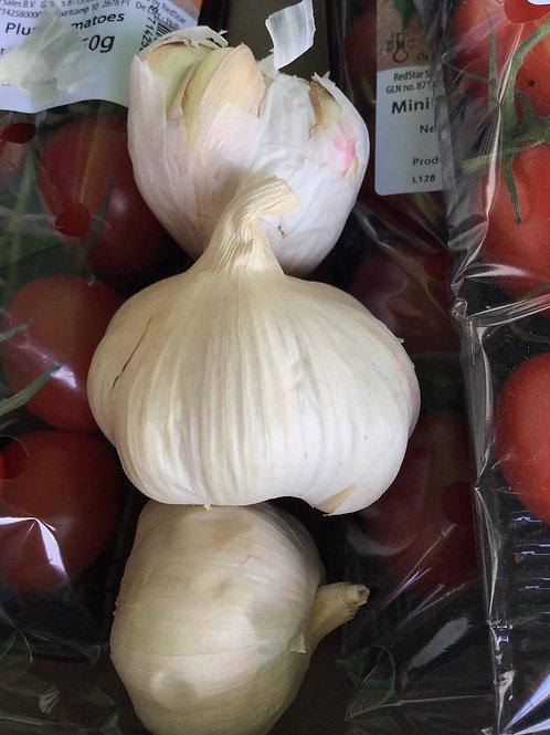 Garlic Bulb (1)