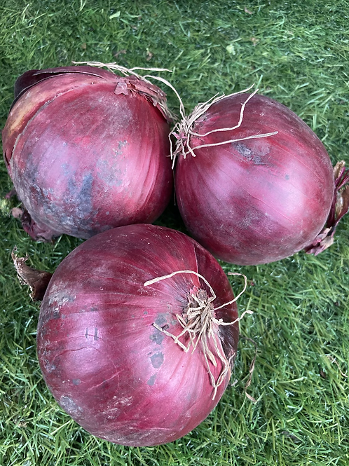 Red Onions - 500g