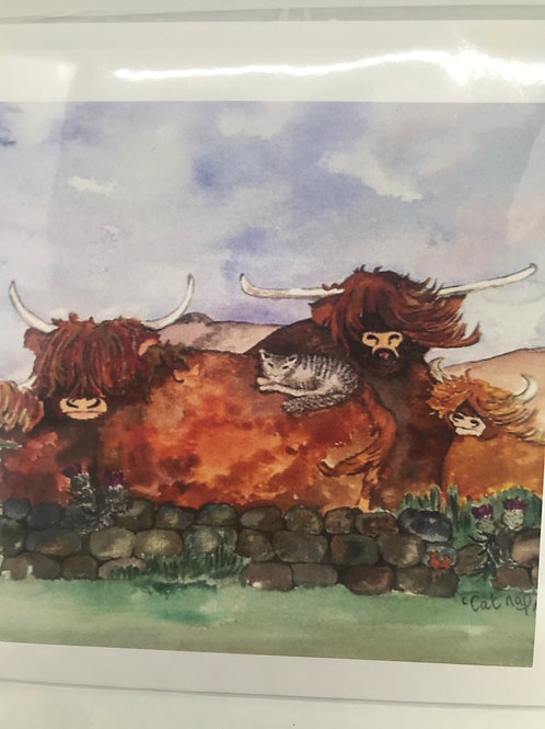 Highland Cow Card - blank