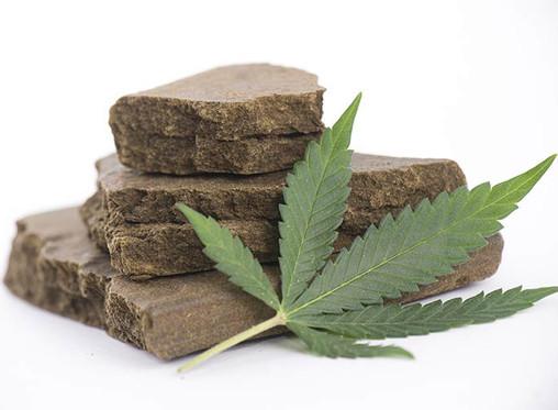 Qué es el Hachís y en qué se diferencia de la Marihuana