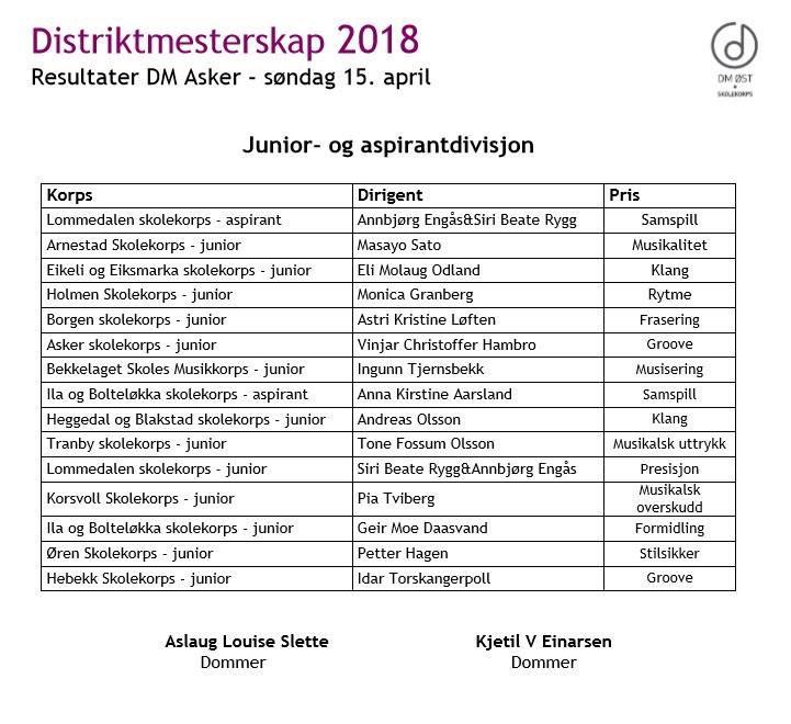 DM resultater 2018.JPG