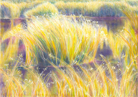 When Grasses Danced With the Sun
