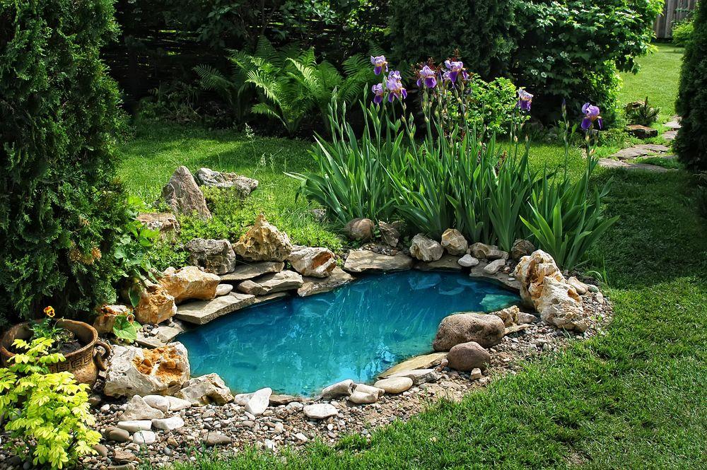 Красивые сады своими руками