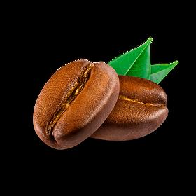 grano de cafe.png