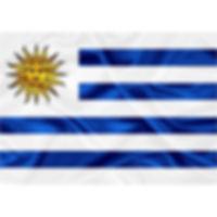 TN500_Bandeira Uruguai.jpg