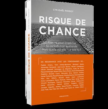 Livre-RDC-Mockup6.png