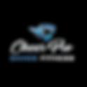 CHEER PRO Logo Watermark.png