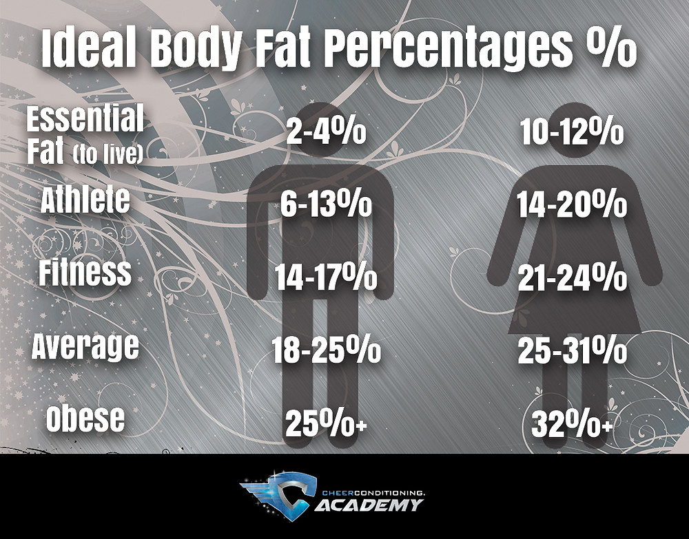 ideal body fat percentages